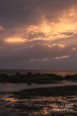 Kodiak Photograph - Gold On The Beach by Carolyn Brown