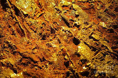 Photograph - Gold Ore Natural Luster Macro by Shawn O'Brien