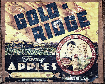 Photograph - Gold Ridge Apple Crate by Lisa Russo
