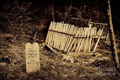 Photograph - Gold Rush Graveyard by David Arment