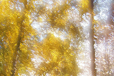 Digital Art - Gold Season by John WR Emmett