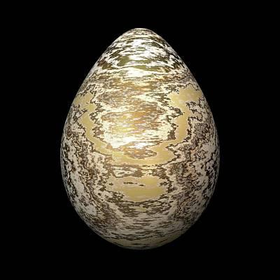 Algorithmic Digital Art - Gold-speckled Egg by Hakon Soreide