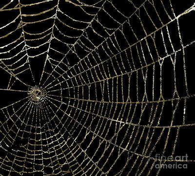 Spider Painting - Gold Spider Web Fashion Halloween by Mindy Sommers