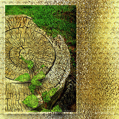 Digital Art - Gold Stump by Deborah Nakano