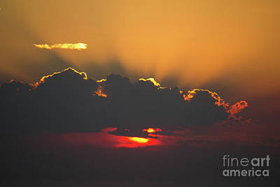 Photograph - Gold Sunrise by Donna Munro