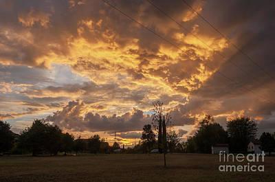 Photograph - Gold Sunset by Leonardo Fanini