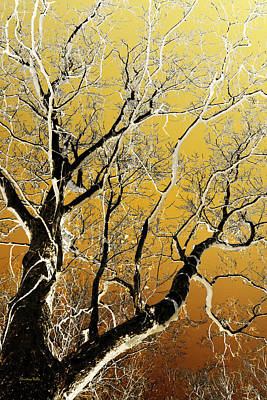 Gold Tree Art Art Print by Christina Rollo