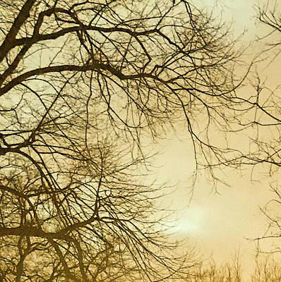 Photograph - Gold Winter Sky by Mireille Roc