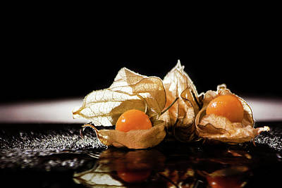 Photograph - Goldberries by Christine Sponchia