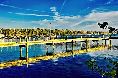 Photograph - Golden Afternoon by Diana Mary Sharpton