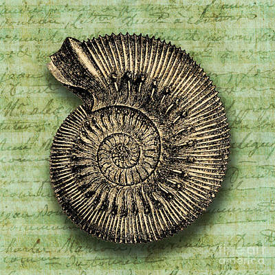Nautilus Digital Art - Golden Ammonite by Ramneek Narang