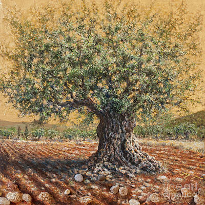 Painting - Golden Ancient Olive Tree by Miki Karni
