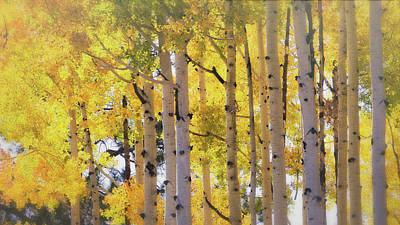 Photograph - Golden Autumn Aspens Part II  by Saija Lehtonen