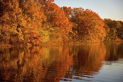 Photograph - Golden Autumn2 by Lilia D