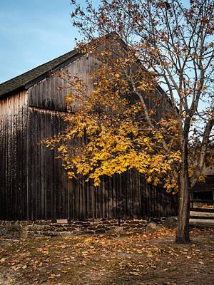 Photograph - Golden Barn by Andrew Kazmierski