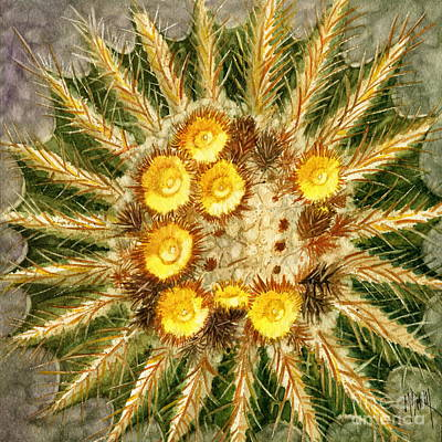 Golden Barrel Cactus Original