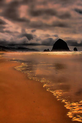 Photograph - Golden Beach by David Patterson