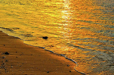Photograph - Golden Beach Sunset by Stephen Anderson
