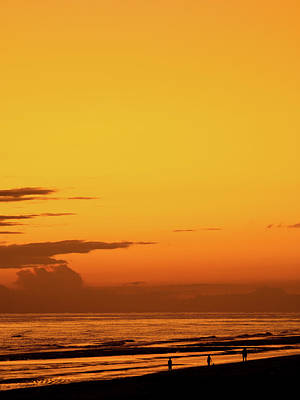 Photograph - Golden Beach Sunset by Steven Myers