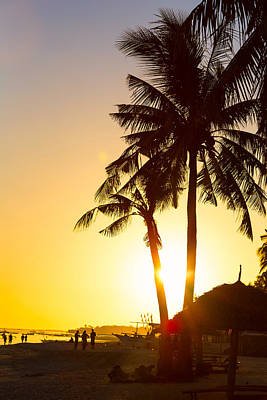 Photograph - Golden Beach Tropics by James BO Insogna