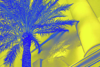 Photograph - Golden Beryl And Sapphire - Jewel Colored Palm by Georgia Mizuleva