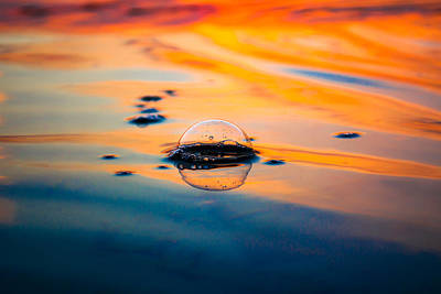 Photograph - Golden Bubble by Shelby Young