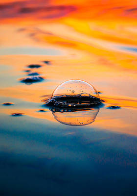 Photograph - Golden Bubble Vertical by Shelby Young