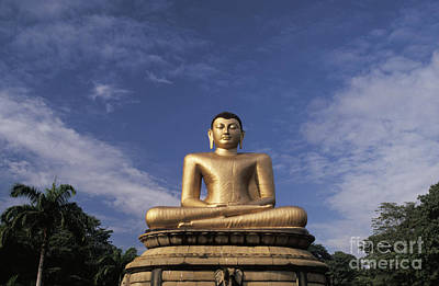 Photograph - Golden Buddha by Larry Dale Gordon - Printscapes