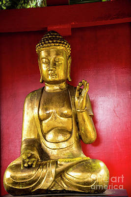 Photograph - Golden Buddha With The Pearl Of Wisdom by Brenda Kean