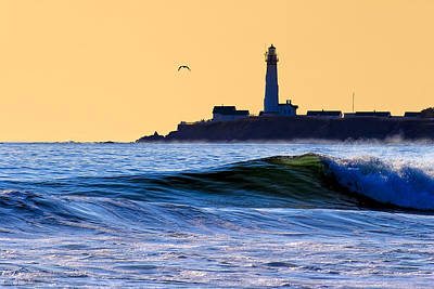 Photograph - Golden California Coast - Pigeon Point Lighthouse by Mark E Tisdale