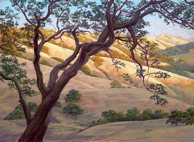 Golden Canyon Art Print