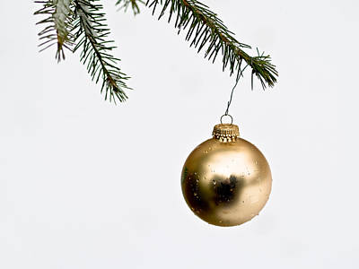 Photograph - Golden Christmas Ornament by Jim DeLillo