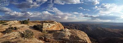 Photograph - Golden Cliff Hanger by Leda Robertson