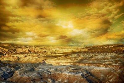 Photograph - Golden Colors Of Desert by Nika Lerman