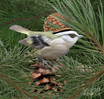 Digital Art - Golden Crowned Kinglet by Walter Colvin