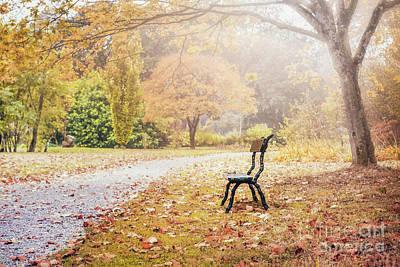 Photograph - Golden Days by Evelina Kremsdorf