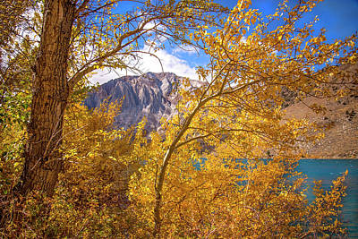 Photograph - Golden Daze At Convict Lake by Lynn Bauer