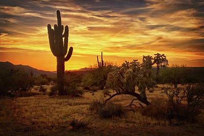Photograph - Golden Desert Horizon  by Saija Lehtonen