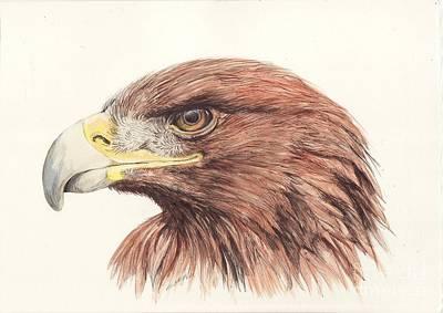 Golden Eagle Painting - Golden Eagle by Morgan Fitzsimons
