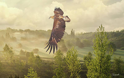 Digital Art - Golden Eagle Soaring by Spadecaller