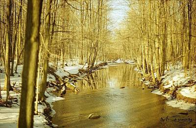 Art Print featuring the photograph Golden Early Spring In Ontario by Maciek Froncisz