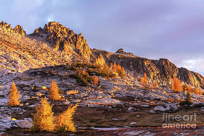 Photograph - Golden Enchantments Morning by Mike Reid