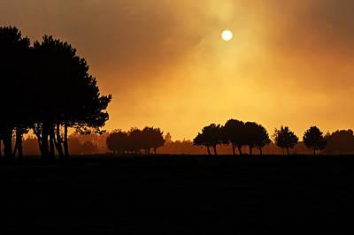 Rolling Hills Of France Photograph - Golden Evening Light by Aidan Moran