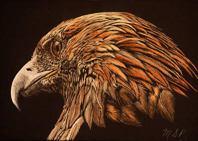Painting - Golden Eye by Margaret Sarah Pardy