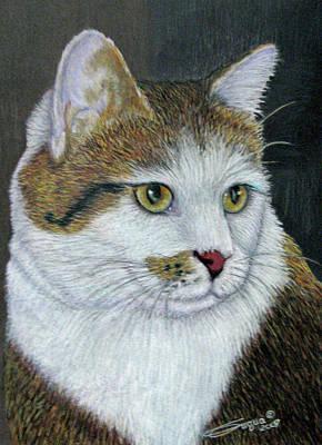 Fuqua - Artwork Drawing - Golden Eyes by Beverly Fuqua