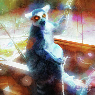 Fuzzy Mixed Media - Golden Eyes Ringtailed Lemur by Mona Stut