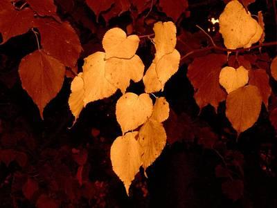 Golden Fall Leaves Art Print