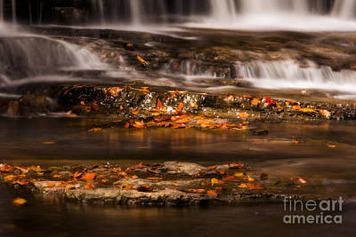 Photograph - Golden Falls by Melissa Petrey