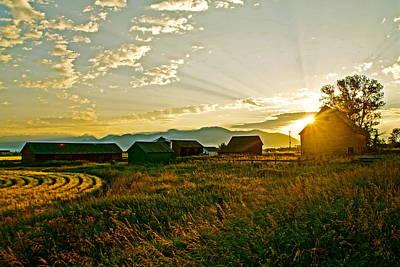 Photograph - Golden Farm by Darren Cole Butcher