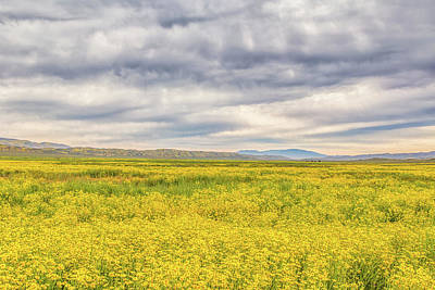 Photograph - Golden Field And Clouds by Marc Crumpler